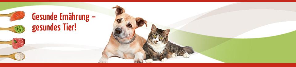 C:\fakepath\Anifit Hundefutter Katzenfutter
