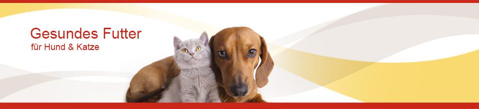 C:\fakepath\Anifit Hundefutter und Katzenfutter